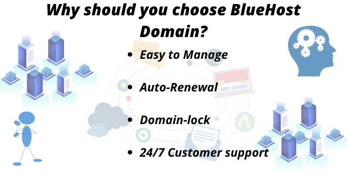 BlueHost Domain Features