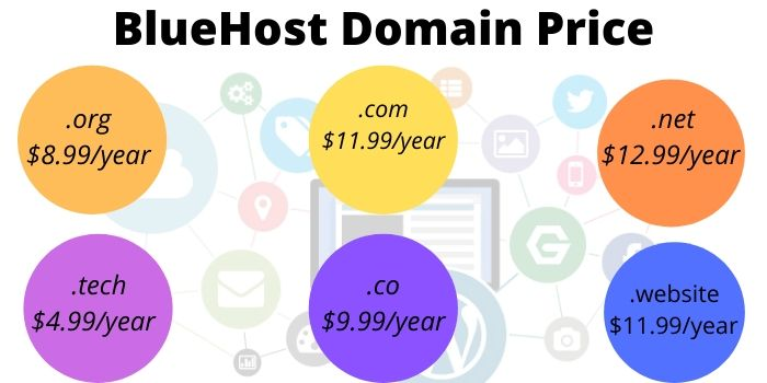 BlueHost Domain Name Cost