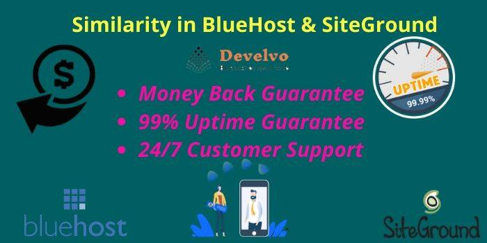 Bluehost & Siteground Similarities