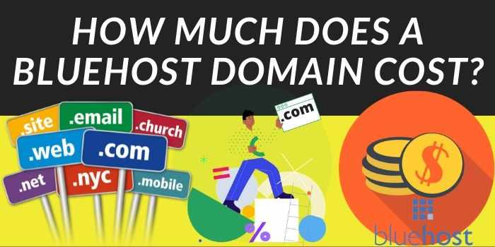 How much does bluehost domain name cost